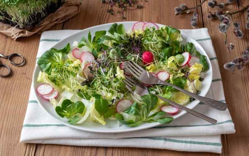 Grønt til din salat