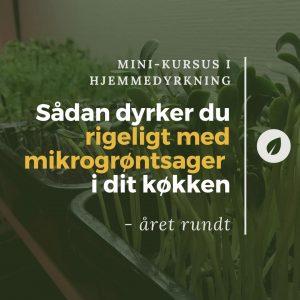 Online kursus i dyrkning af mikrogrønt