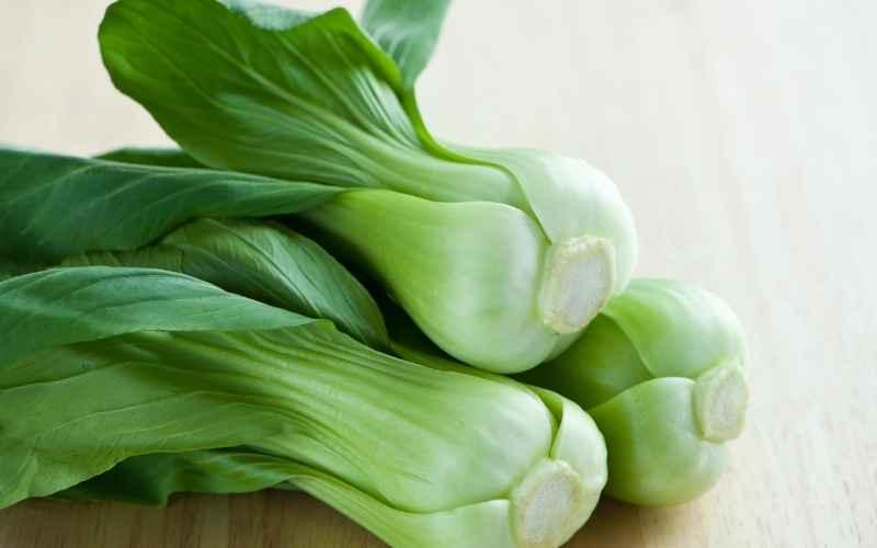 Pak choi dyrkning – Must-have grøntsag til hjemmedyrkning