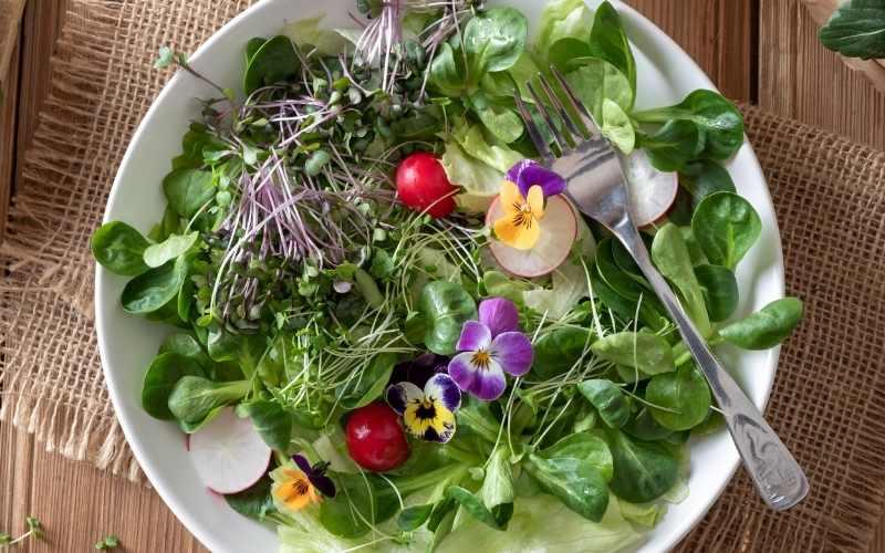 imponerende salater